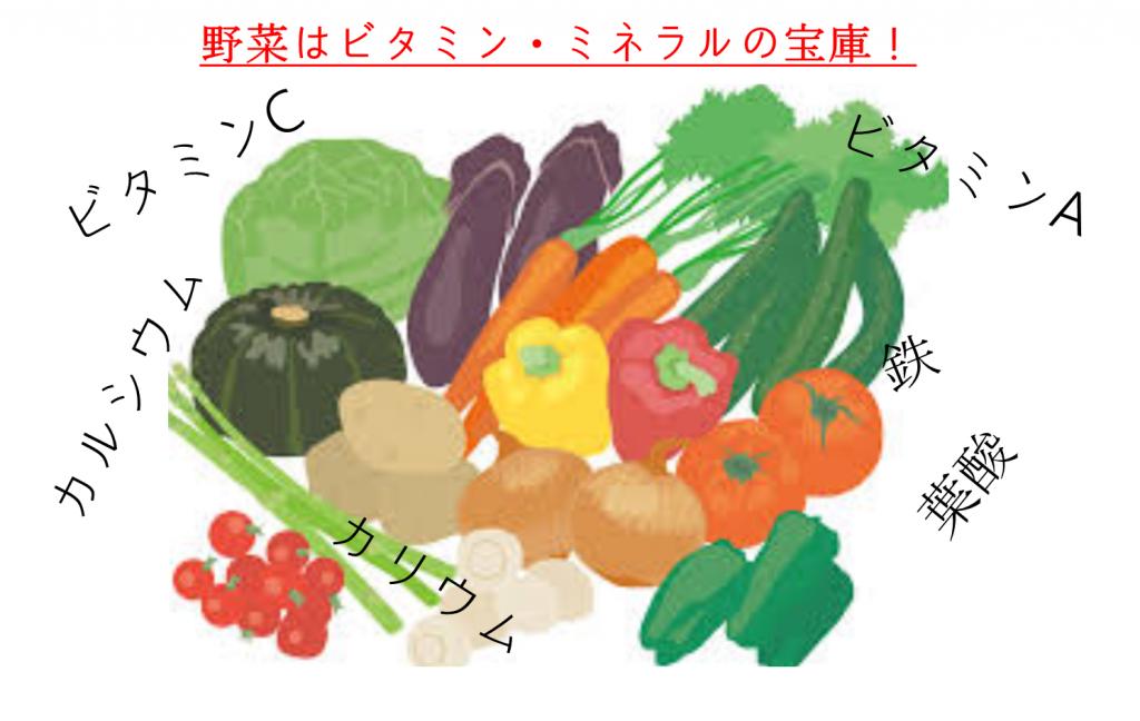 野菜はビタミンとミネラルの宝庫