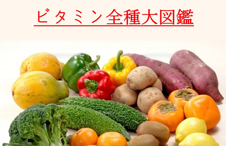 【自給栄養学2】ビタミン大辞典